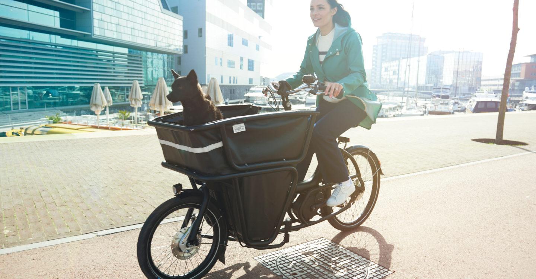 Urban Arrow Shorty lastesykkel